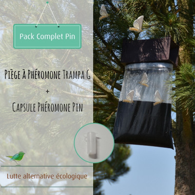 Pack phéromone du pin