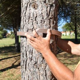 Mousse collier Écopiège® arbre