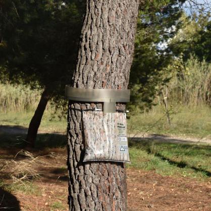 Écopiège® Motif Écorce, protection contre chenilles processionnaires